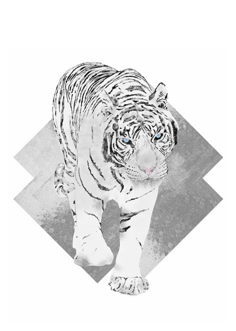 White Tiger 0