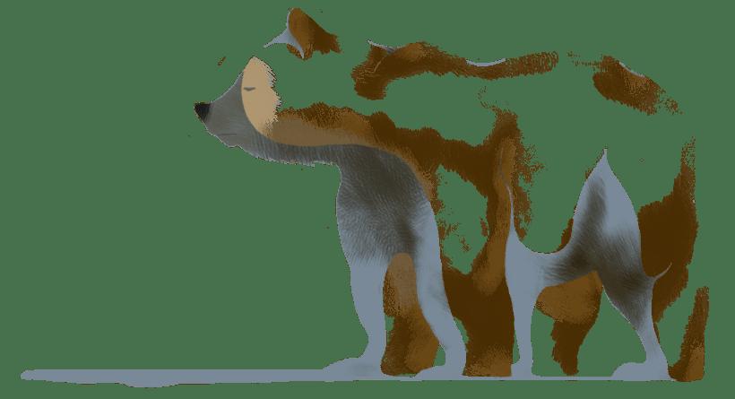 Animals 5