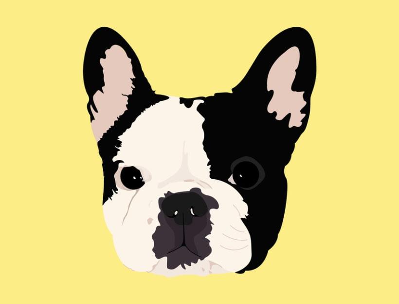 Retratos de Mascotas  1
