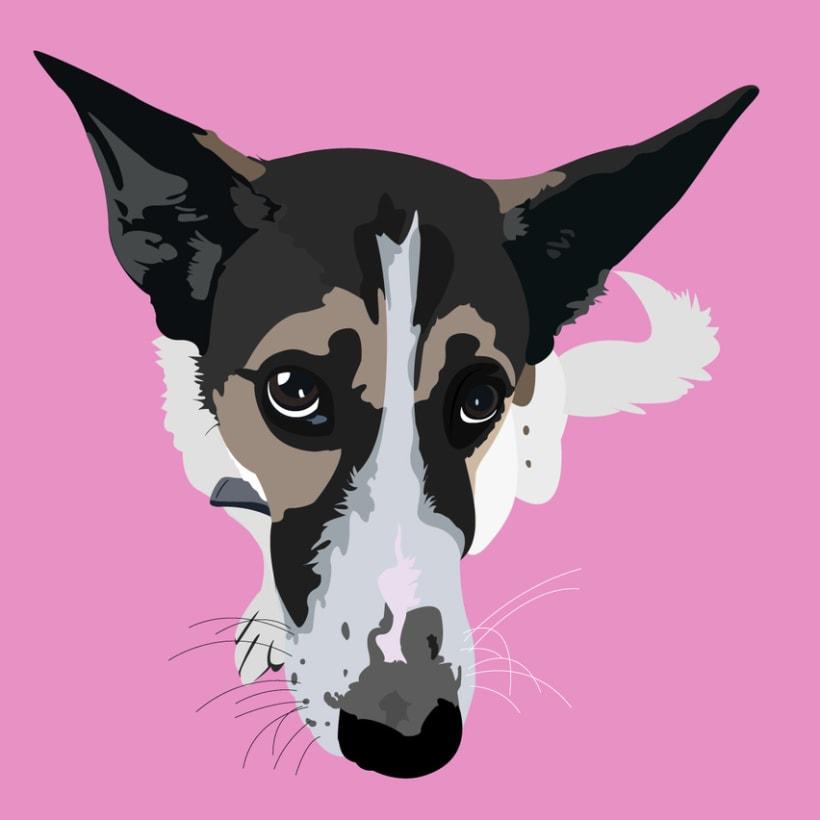 Retratos de Mascotas  2
