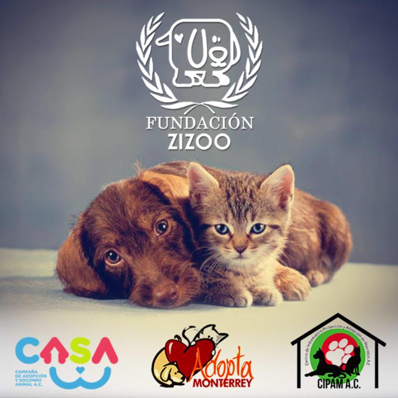 ZIZOO PETSHOP 3
