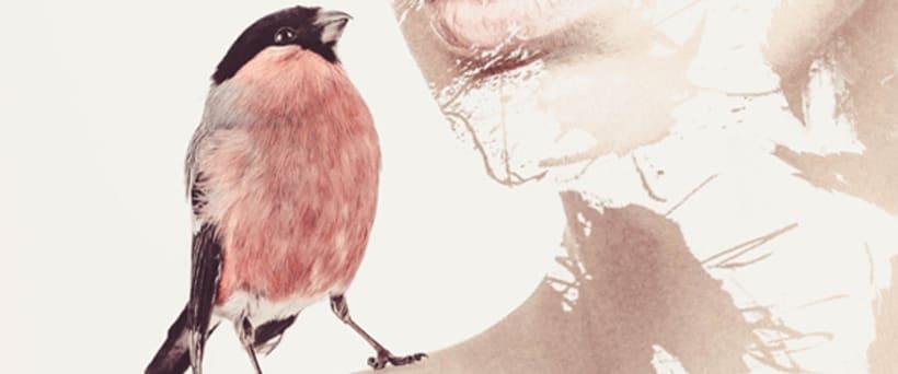 Pájaros en la cabeza 5