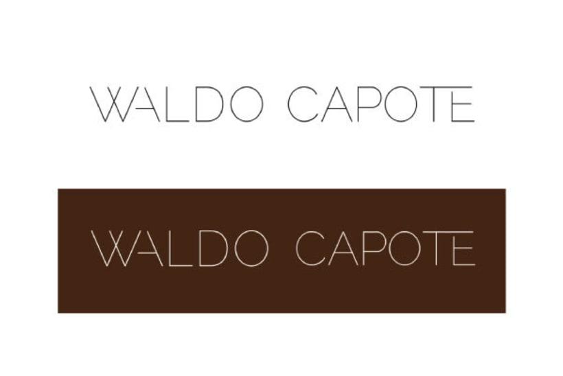Waldo Capote · Imagen corporativa 2