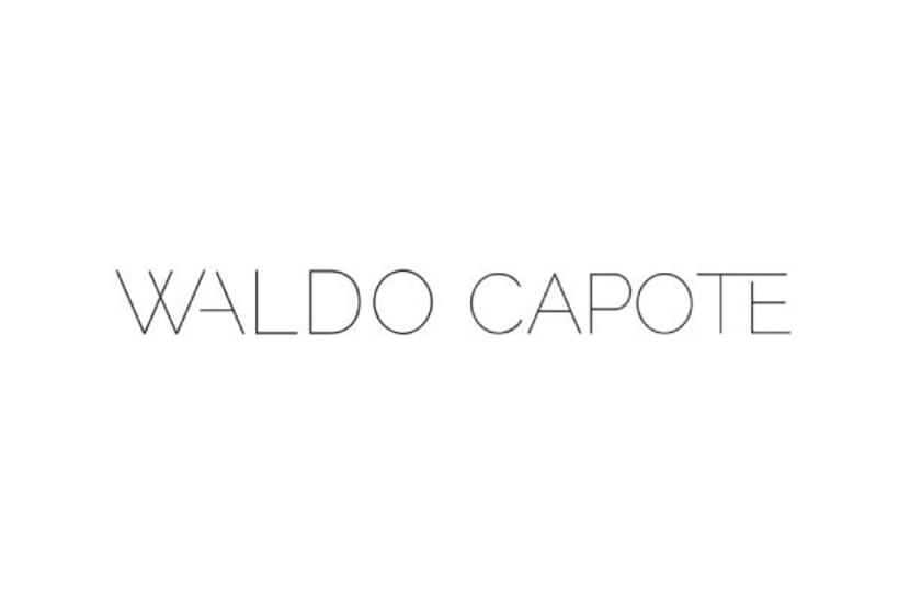 Waldo Capote · Imagen corporativa 0