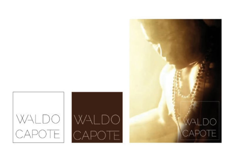 Waldo Capote · Imagen corporativa 3