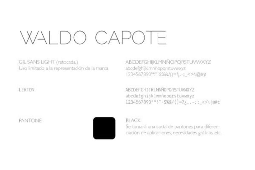 Waldo Capote · Imagen corporativa 1