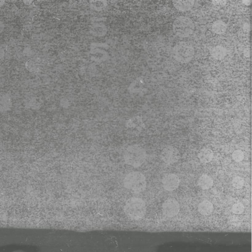 Lisbon B&W (Holga - Lomography) 2