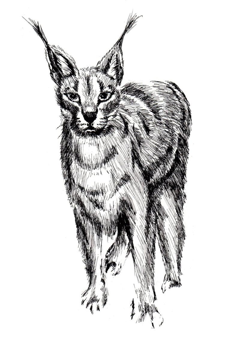 Ink Animals 0