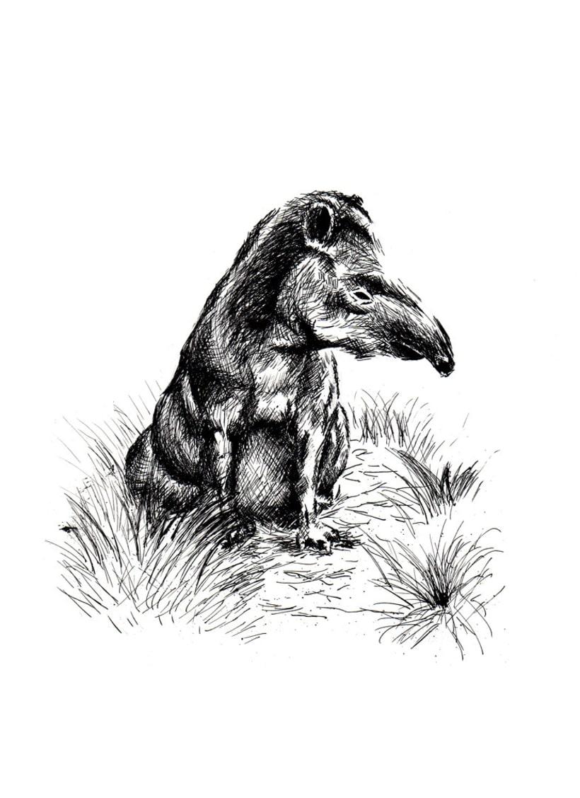 Ink Animals 1