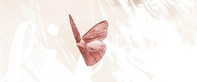 Mariposas 7