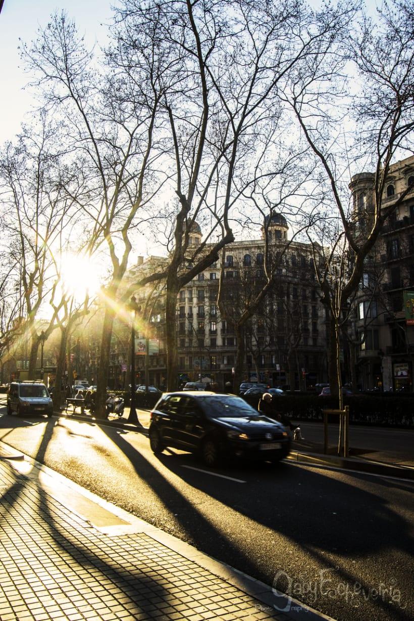 Por Barcelona… Fotografiando ando…  12