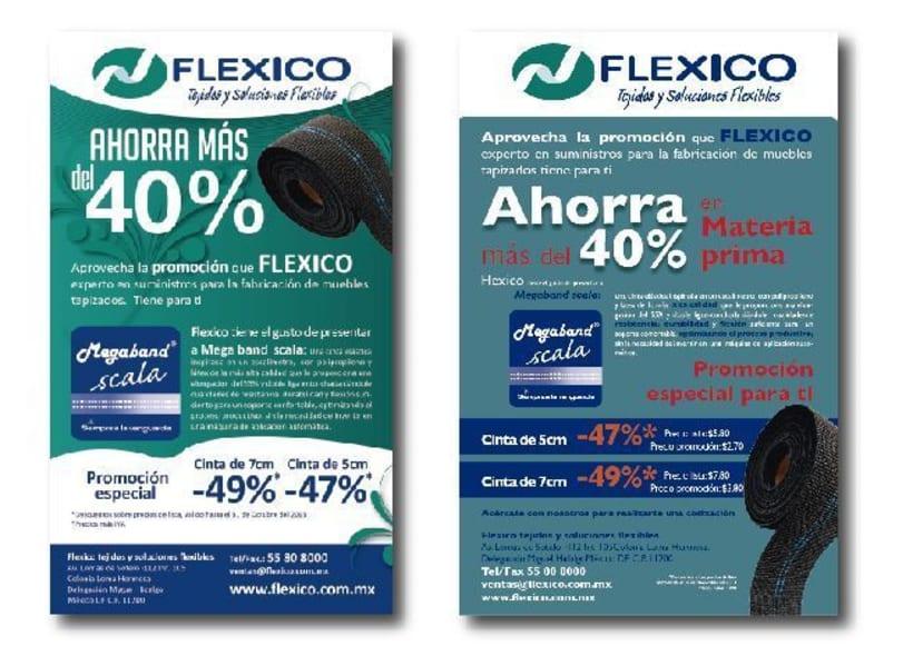 Flexico México -1