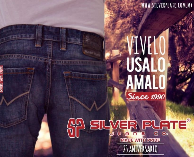 Silver Plate -1