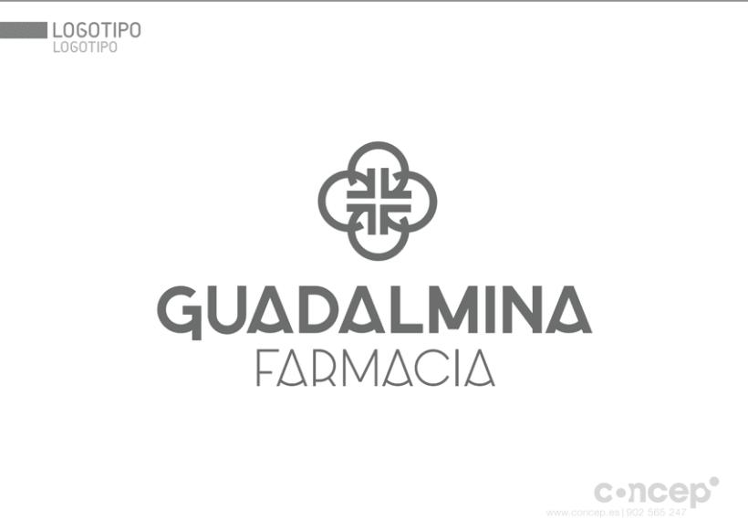 Farmacia Guadalmina 1