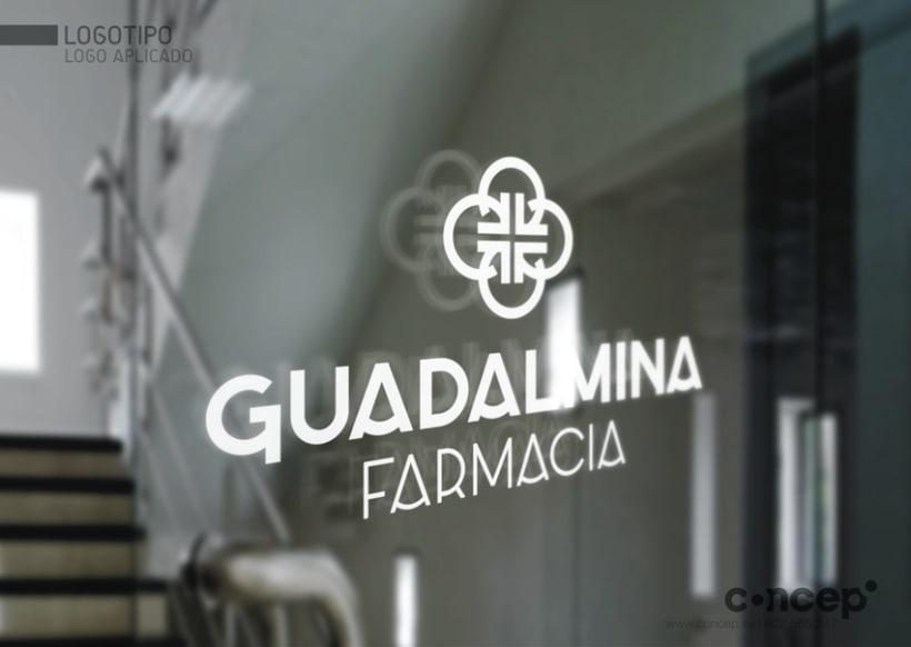 Farmacia Guadalmina 10