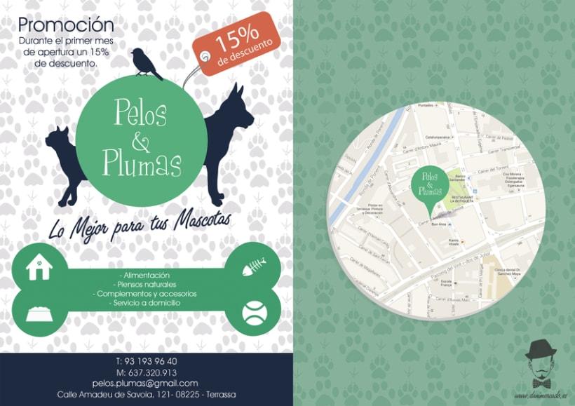 Diseño Gráfico - Tienda de Suplementos para Mascotas 0