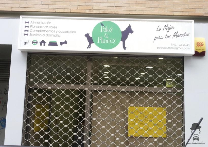 Diseño Gráfico - Tienda de Suplementos para Mascotas 1