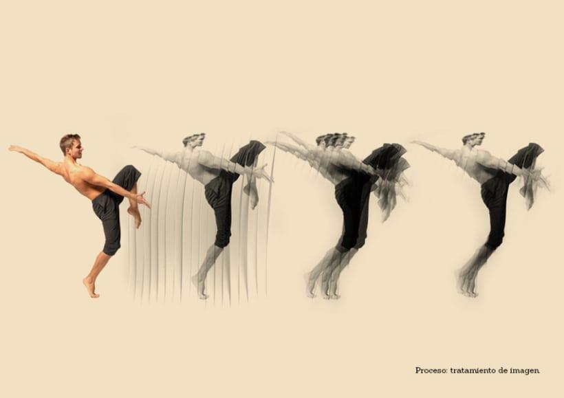 Festival Internacional Madrid en Danza 3