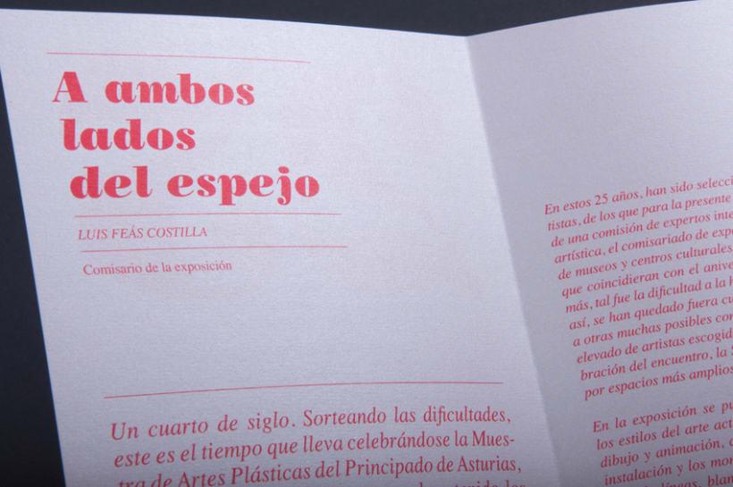 25 Aniversario Muestra de Artes Plásticas de Asturias 9