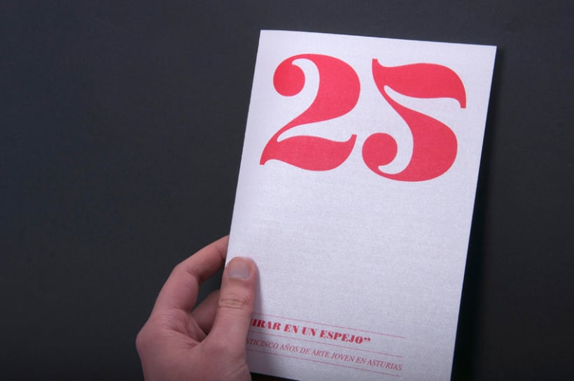 25 Aniversario Muestra de Artes Plásticas de Asturias 12