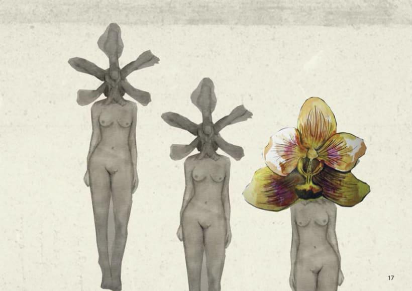 Cabeza de Orquídea 4