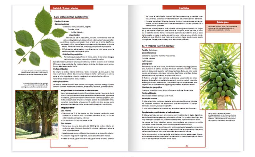 Colección editorial -Guía Médica- 6
