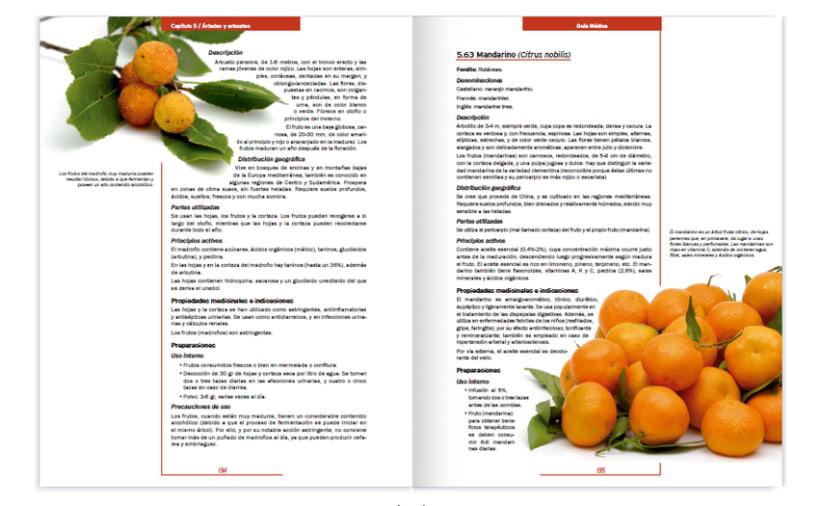 Colección editorial -Guía Médica- 7
