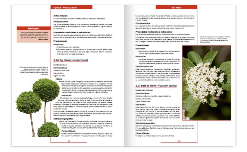 Colección editorial -Guía Médica- 8