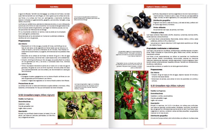 Colección editorial -Guía Médica- 5