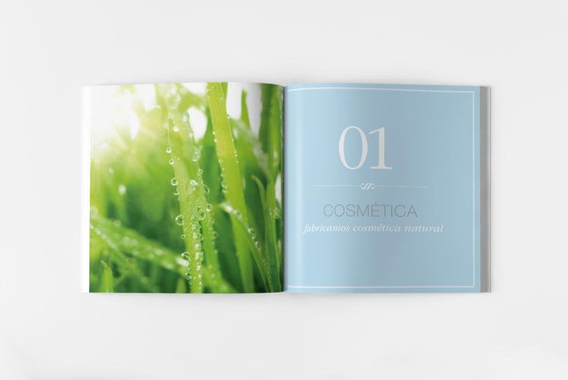 Catálogo Nophie Essences 4