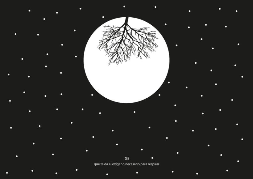 Perdida - Gráfica experimental 14
