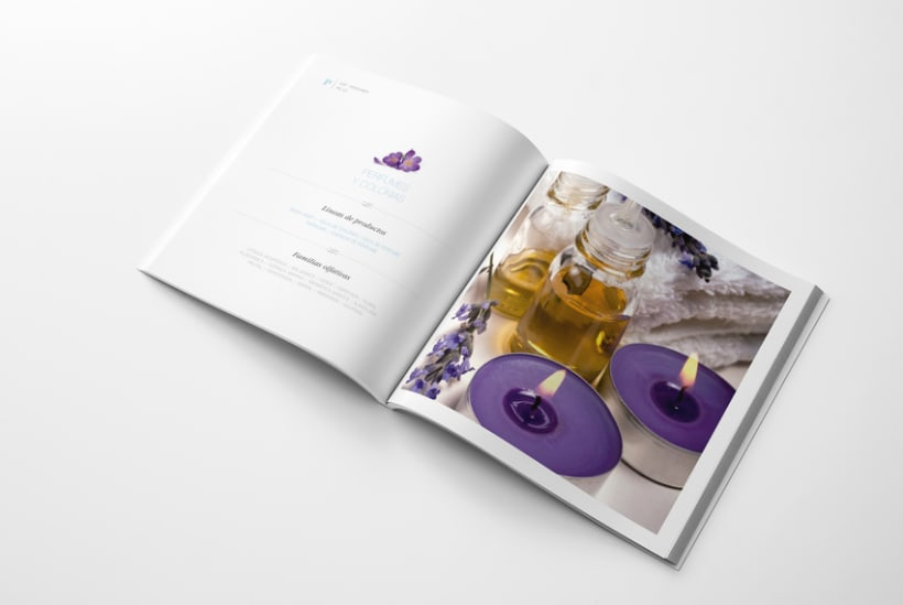 Catálogo Nophie Essences 8