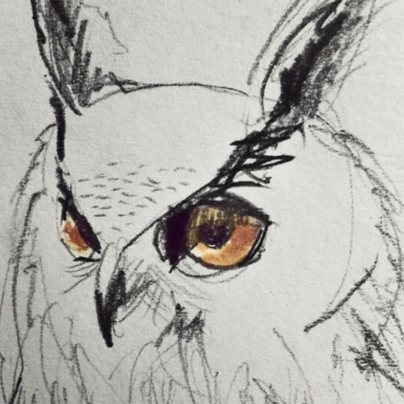 Sketches - Bocetos 2