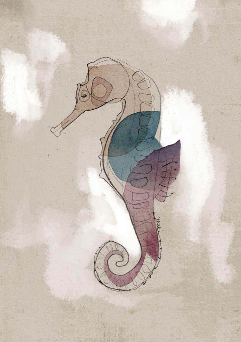 Caballito de mar y mariposa 0