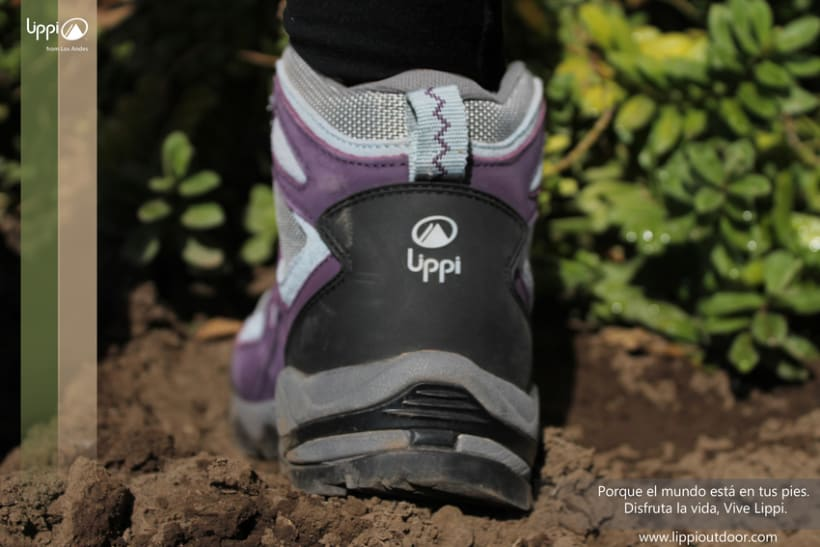 Campaña Lippi y Fresito 0