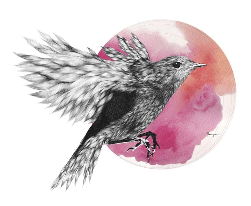 Furry Bird II -1