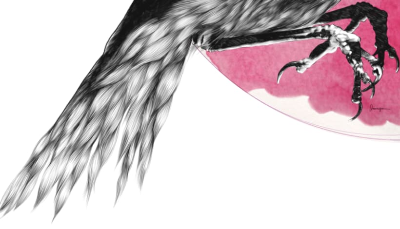 Furry Bird II 0