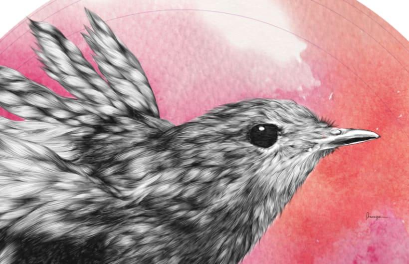 Furry Bird II 1