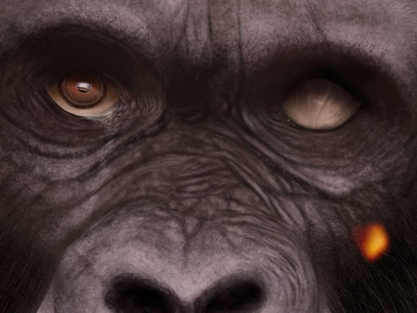 Gorila 3
