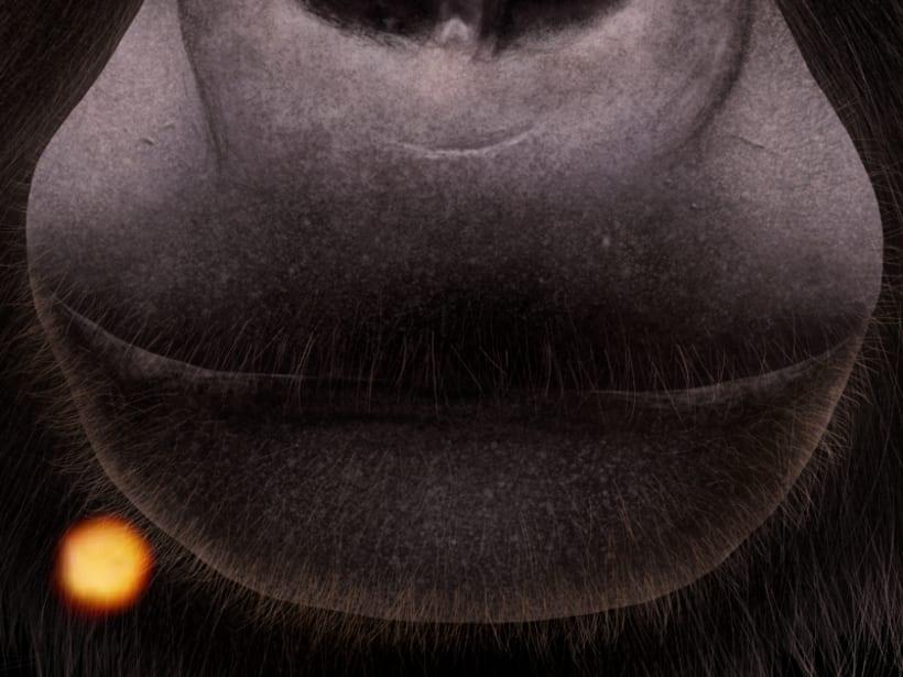 Gorila 4