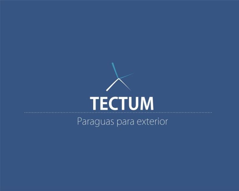 Tectum: Paraguas -1
