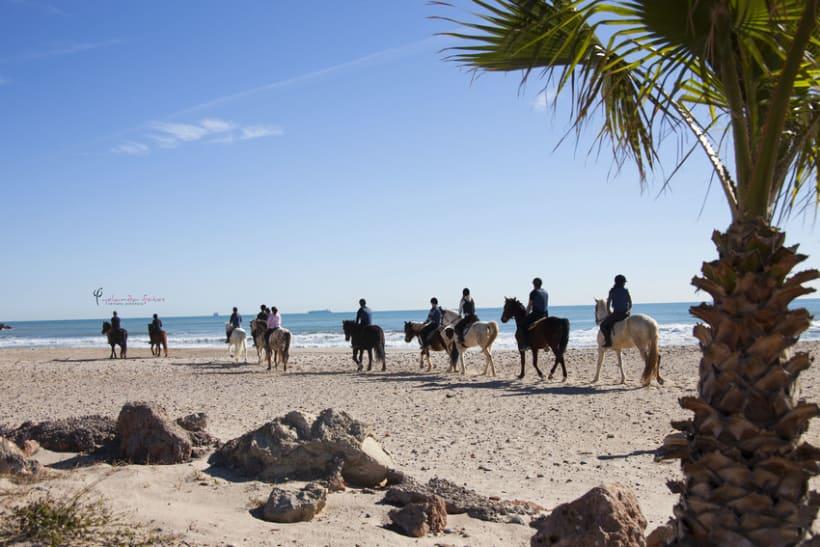 Reportaje - en caballo por la playa 2