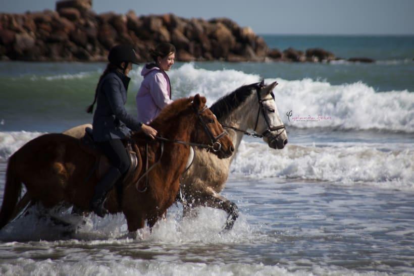 Reportaje - en caballo por la playa 6