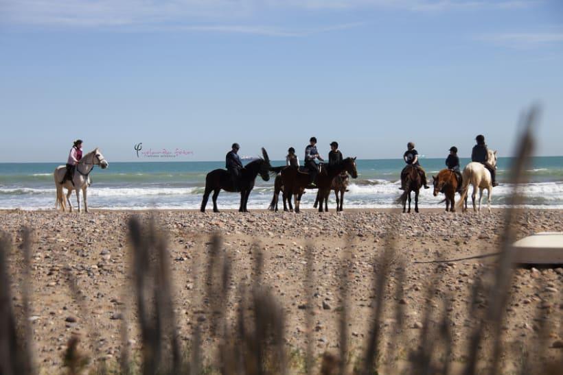 Reportaje - en caballo por la playa 4