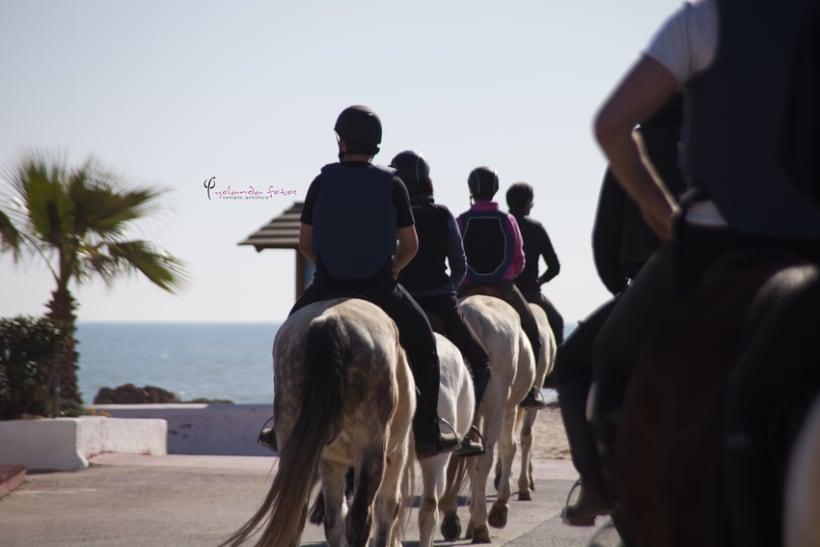Reportaje - en caballo por la playa 1