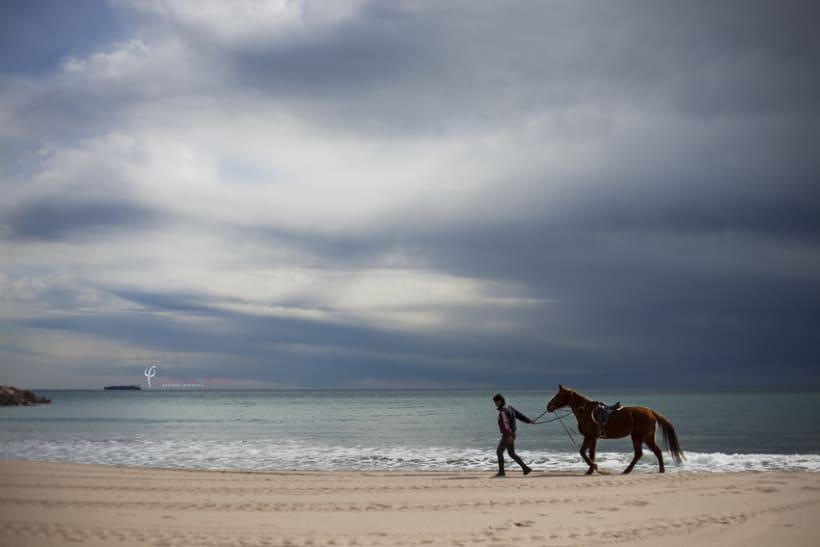 Reportaje - en caballo por la playa 0