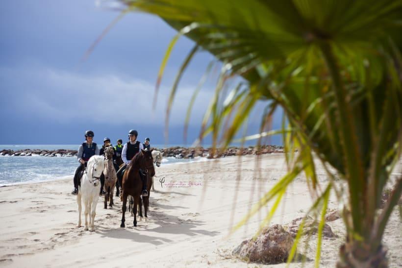 Reportaje - en caballo por la playa 5