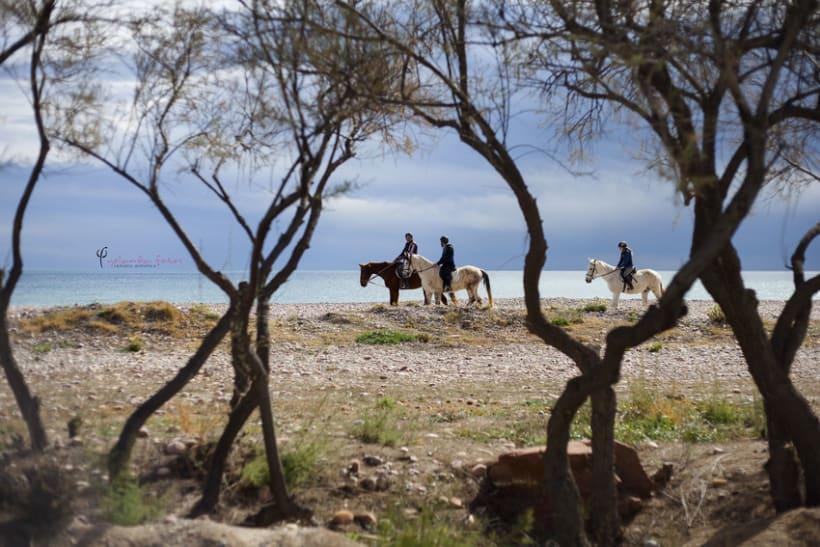Reportaje - en caballo por la playa 12