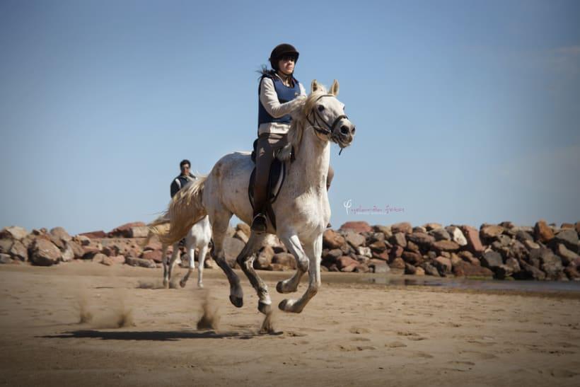 Reportaje - en caballo por la playa 10