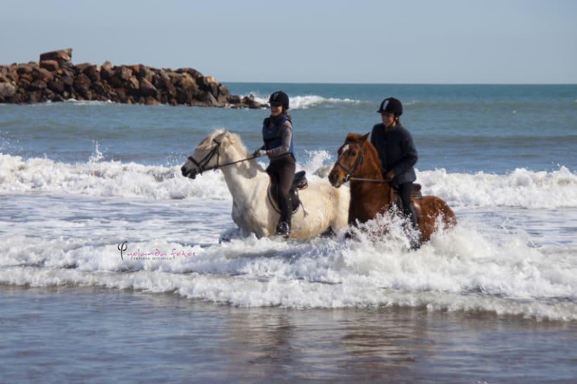 Reportaje - en caballo por la playa 11
